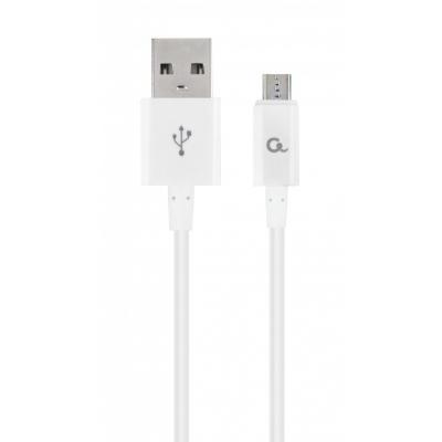 CC-USB2P-AMmBM-1M-W