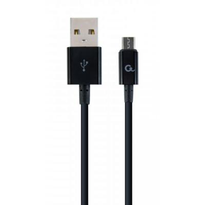 CC-USB2P-AMmBM-2M