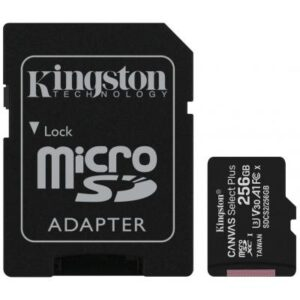 Карта пам'яті Kingston 256GB microSD class 10 A1 Canvas Select Plus (SDCS2/256GB)